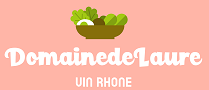 domainedelaure-vin-rhone.com
